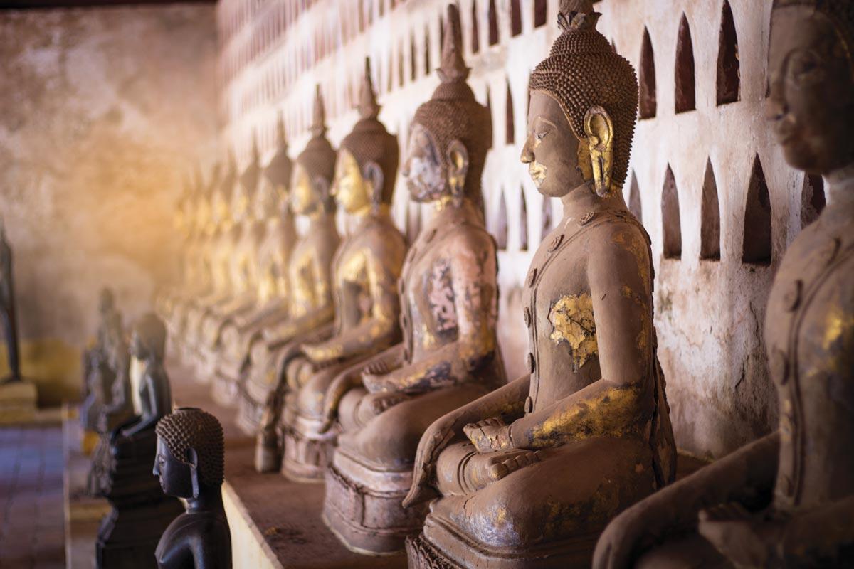 Tea-travel_Laos