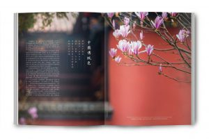 Traditional Chinese Colors