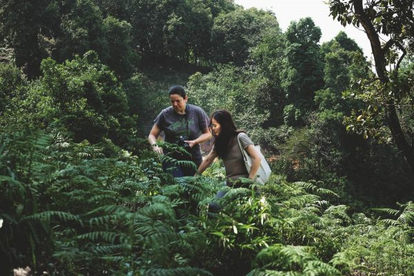 """Eastern Leaves owners and workers see themselves as """"wild forest keepers,"""""""