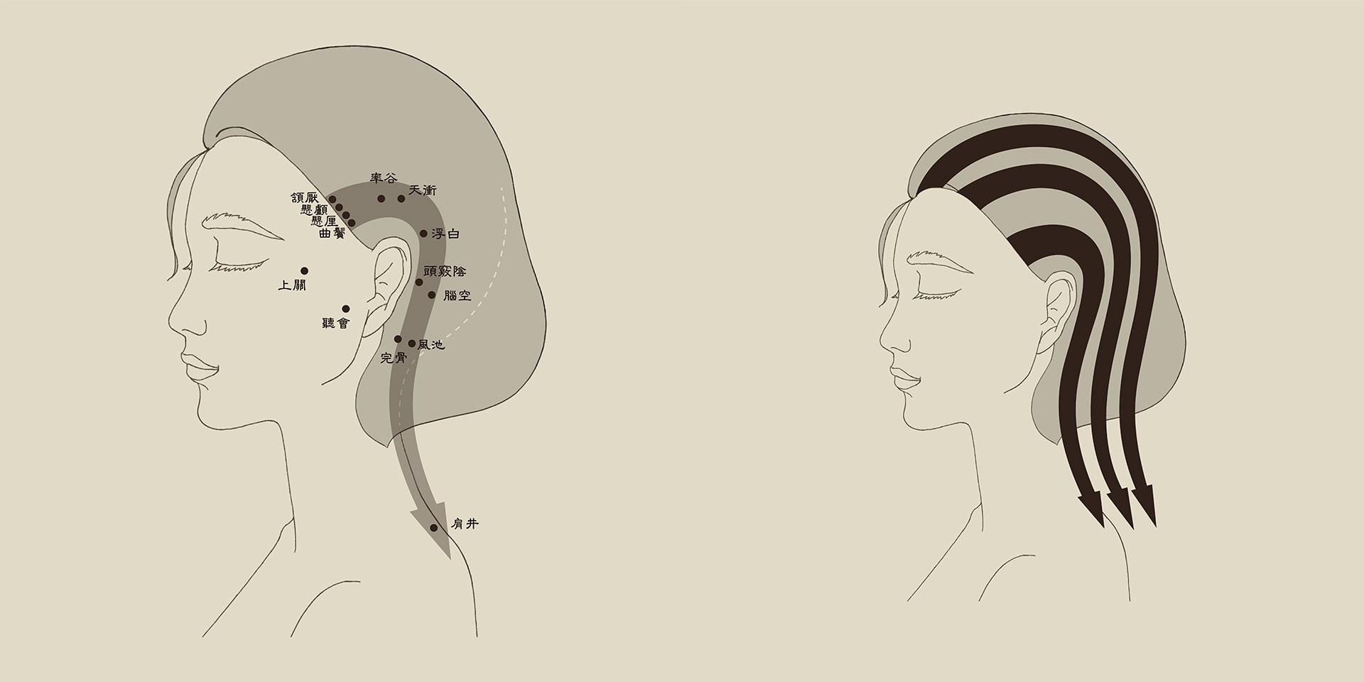 Scalp massage map - Gallbladder meridian